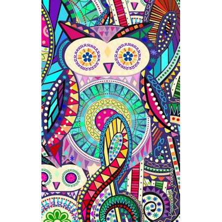 Password Journal : Password Keeper / Owl Gifts ( Internet Address Logbook / Diary / Softback Notebook ) [ Carnival ]