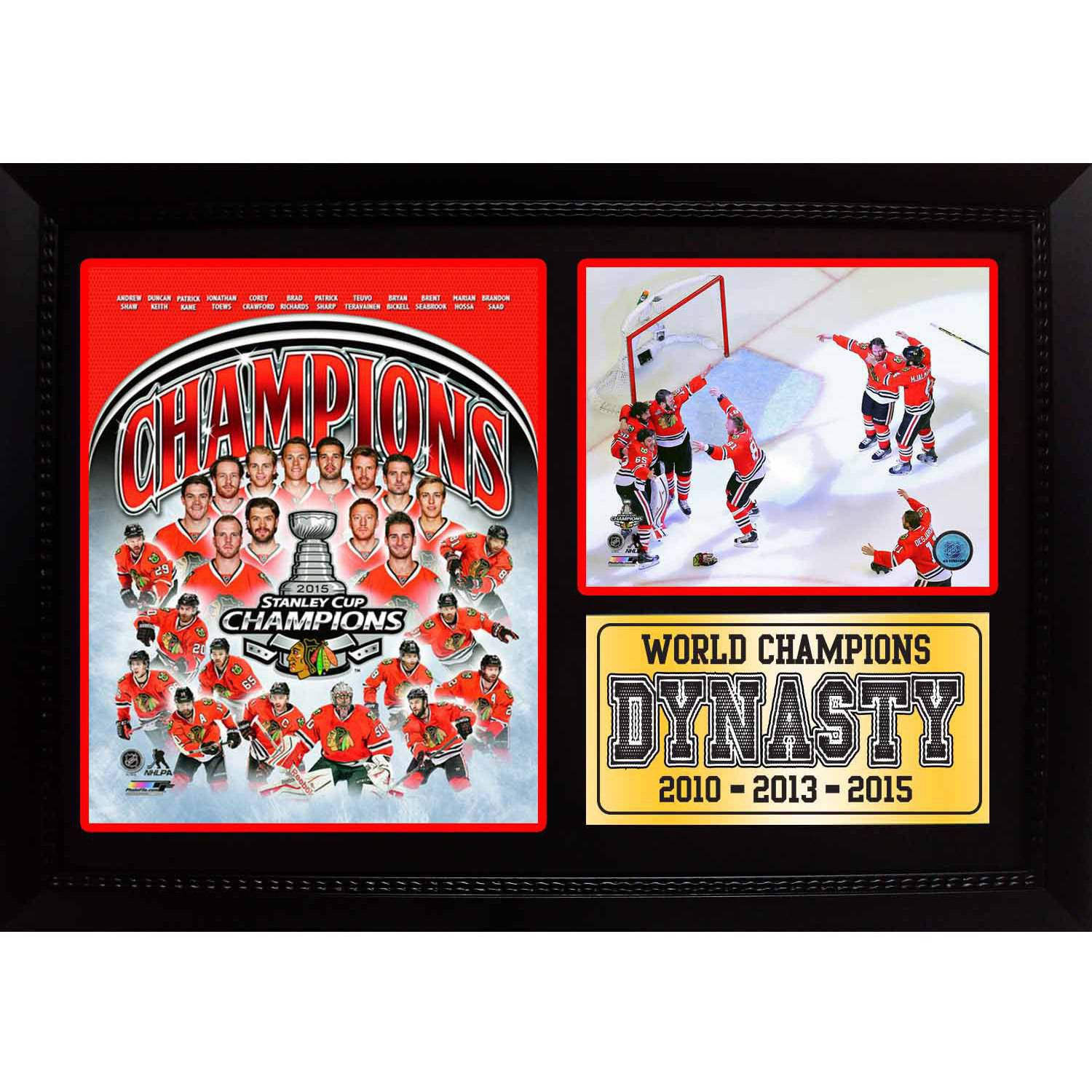 "12"" x 18"" Photo Stat Frame, 2015 Stanley Cup Champions Chicago Blackhawks"