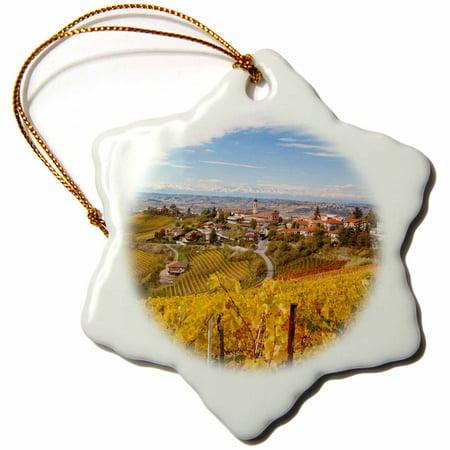 3dRose Vineyards, Treiso, Alba, Langhe, Piedmont, Italy - Snowflake Ornament, 3-inch ()