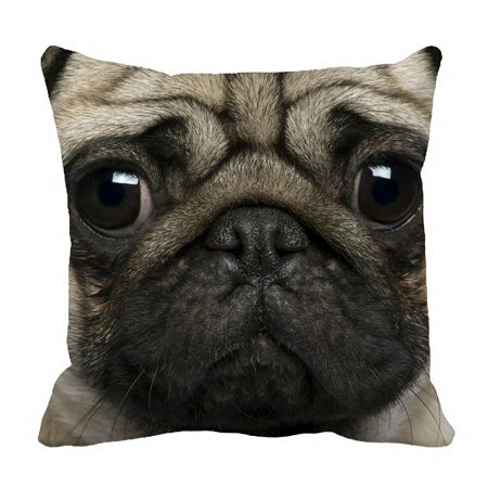 Abphqto Close Up Pug 2 Years Old Pillow Case Pillow Cover Pillow Protector Two Sides For Couch Bed 20x20 Inch Walmart Com Walmart Com