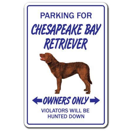 CHESAPEAKE BAY RETRIEVER Decal dog pet parking hunting hunt vet breeder | Indoor/Outdoor | 7
