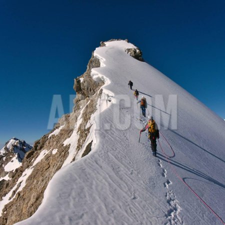 Tied Climbers Climbing Mountain with Snow Field Tied with a Rope with Ice Axes and Helmets Print Wall Art By Taras Kushnir