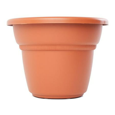 Bloem  Milano Terra Cotta Planter (Pack of 12)