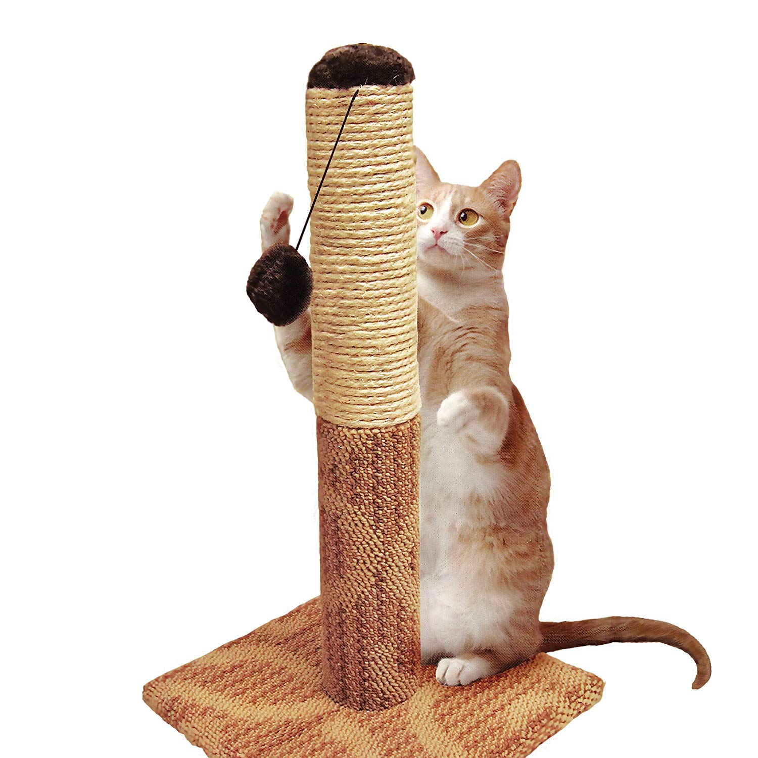 Natural Sisal Cat Scratching Post and Plush Carpet Covered Base GNEGNIS Tall Large Scratching Post 82cm Cat Kitten Tree Activity Centre Climbing Tower