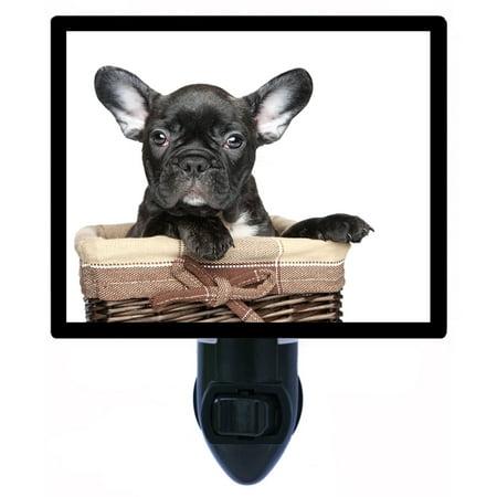 - Night Light - Photo Light - Black French Bulldog - Dog