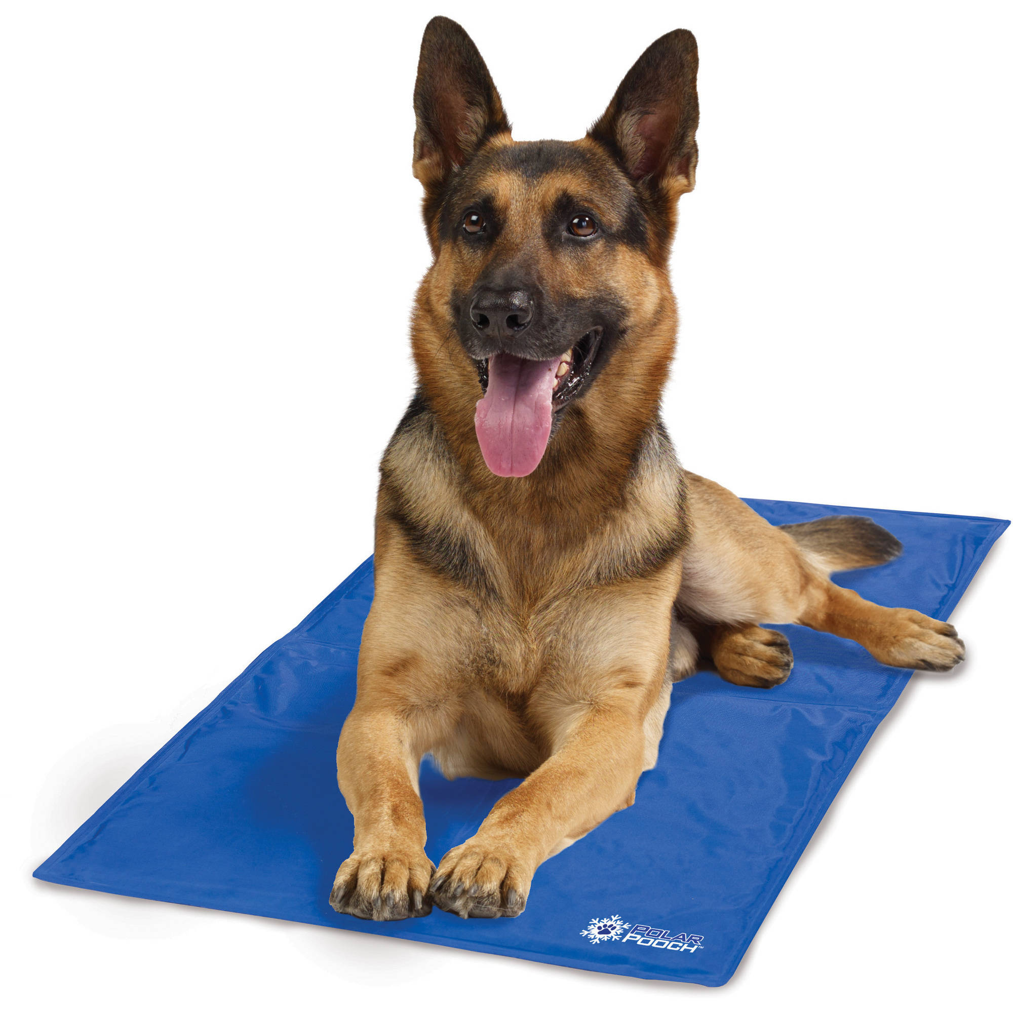reducing odor absorbent disposable mats dog cat pad for itm pet puppy training