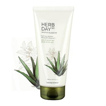 [ The Face Shop ] Herb Day 365 Master Blending Foaming Cleanser - Aloe & Green Tea 5.7 fl oz (170