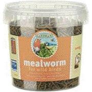 Gardman BA04510 Mealworm Tub Small, 3.5 oz. (100 gram) 3.5-Ounce
