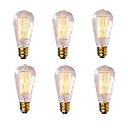 iSunMoon 60 Watt Edison Style Light Bulb - 6 Pack, Antique Edison Bulb, Incandescent Light Bulb, Squirrel-Cage Teardorp Filament -