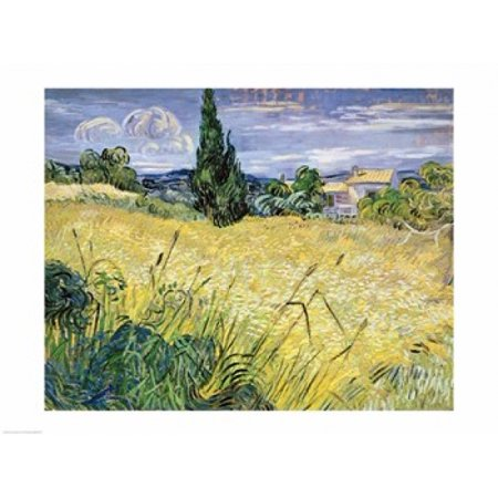 Landscape with Green Corn 1889 Poster Print by Vincent Van Gogh ()