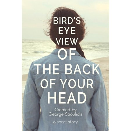 - Bird's-Eye View of the Back of Your Head - eBook