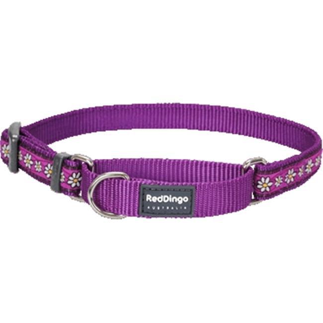 Red Dingo MC-DC-PU-ME Martingale Dog Collar Design Daisy Chain Purple, Medium