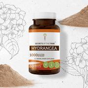 Secrets of the Tribe Hydrangea 60 Capsules, 500 mg, Organic Hydrangea (Hydrangea arborescens) Dried Root