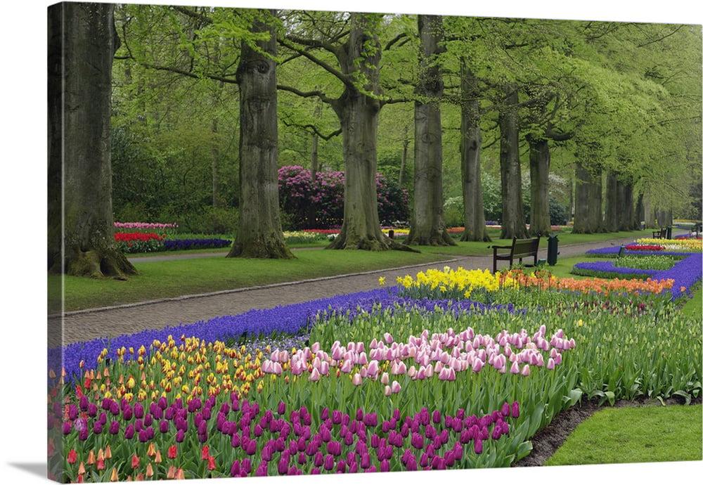 Great Big Canvas Garden Of Daffodils Tulips And Hyacinth Flowers Keukenhof Gardens Lisse Netherlands Canvas Wall Art Walmart Com Walmart Com