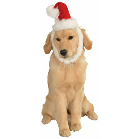 Santa Hat with Beard Pet Costume Accessory - Small/Medium for $<!---->