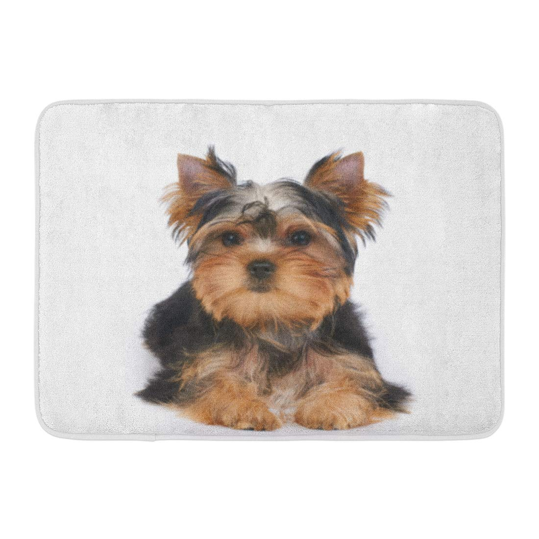 Sidonku Dog One Puppy Of The Yorkshire Terrier Lies On White Small Yorkie Adorable Doormat Floor Rug Bath Mat 23 6x15 7 Inch Walmart Com Walmart Com