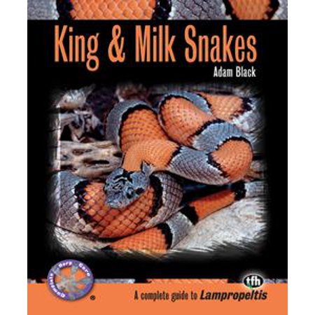 - King & Milk Snakes (Complete Herp Care) - eBook