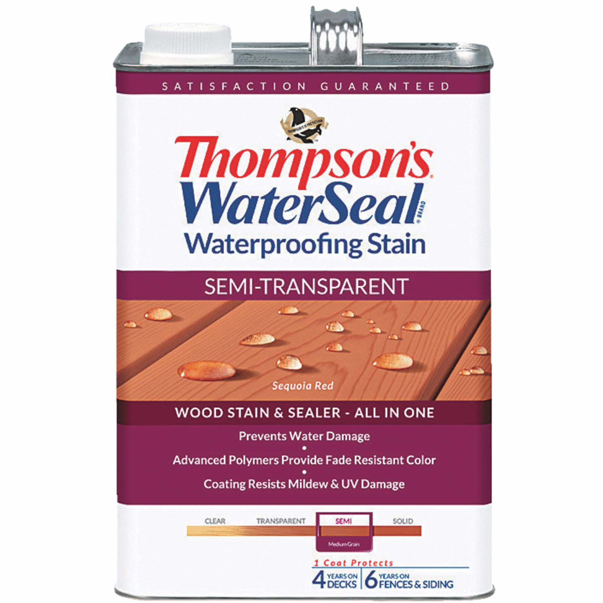 Thompsons WaterSeal Semi-Transparent Waterproofing Stain