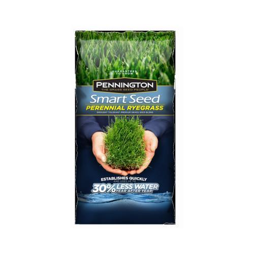 Pennington 100526658 3-Lb. Smart Seed Perennial Ryegrass ...