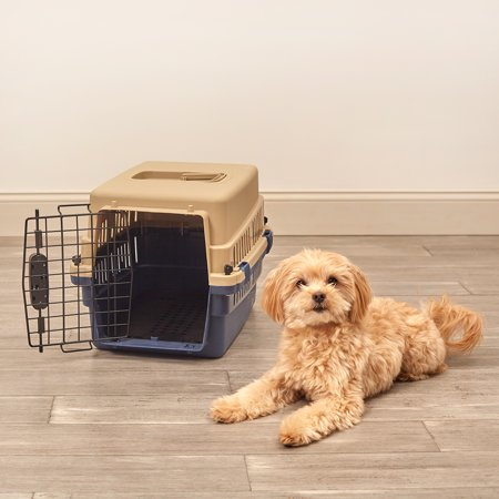 Pet Sentinel Extra Small Plastic Pet Crate 19in H x 12in W x 13in