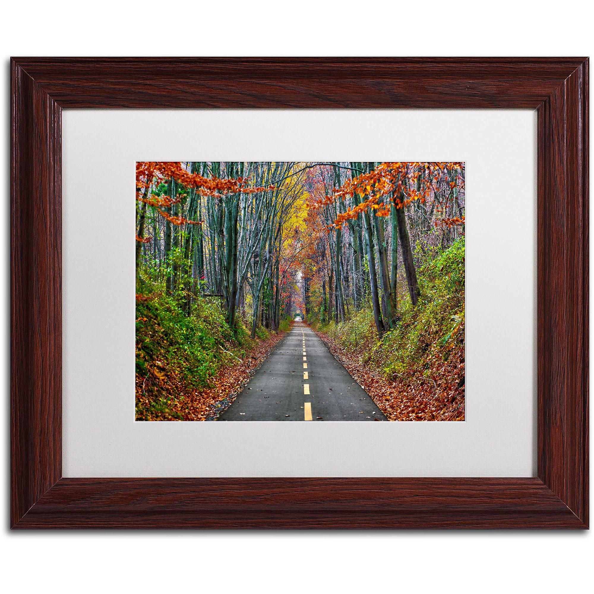 "Trademark Fine Art ""Paths"" Canvas Art by CATeyes, White Matte, Wood Frame"