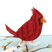 Lovepop Cardinal Pop Up Card 3D Card Birthday Card Sympathy Card Animal Card Bird Card