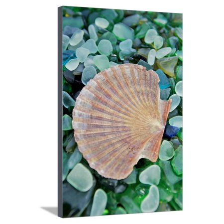 Crystal Cove #25 Stretched Canvas Print Wall Art By Alan