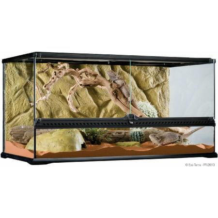 Exo Terra Wide Glass Terrarium, Large ()