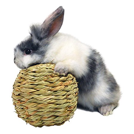 Medium Grass Ball - Peters Woven Grass Play Ball for Rabbits