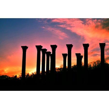 Plastic Greek Columns (LAMINATED POSTER Greek Sunset Arboretum Washington Columns Dc Poster Print 24 x)