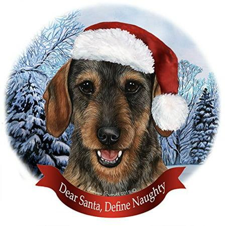 Holiday Pet Gifts Dachshund Wire Wild Boar Santa Hat Dog