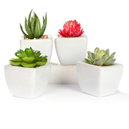 White Artificial Pot (Mini Artificial Succulent Plants in White Planter Pots, Set of 4, White )