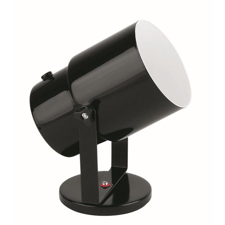 Lite Source Pin-Up Spot Light in Black