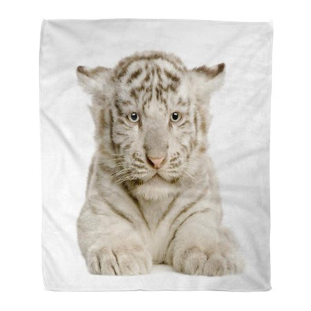 ASHLEIGH Flannel Throw Blanket Black Baby White Tiger Cub Months in Front Soft for Bed Sofa and Couch 50x60 Inches