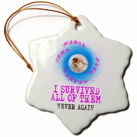 3dRose Wet sparrow and hurricanes on white. Survivor. Never again - Snowflake Ornament, 3-inch