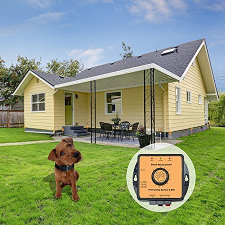 Pet Fencing System Wireless Dog Fence - In-Ground Radio Fence with 2,7000 Sq. Metre Coverage - Invisible Underground Dog Fence with Boundary Marks and Rechargeable Receiver Collar