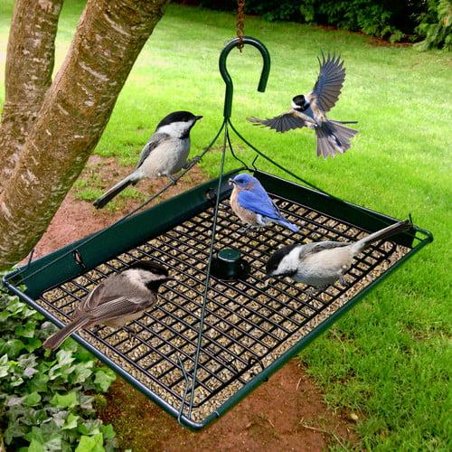 Zenport Platform Tray Birdfeeder by Zenport Industries