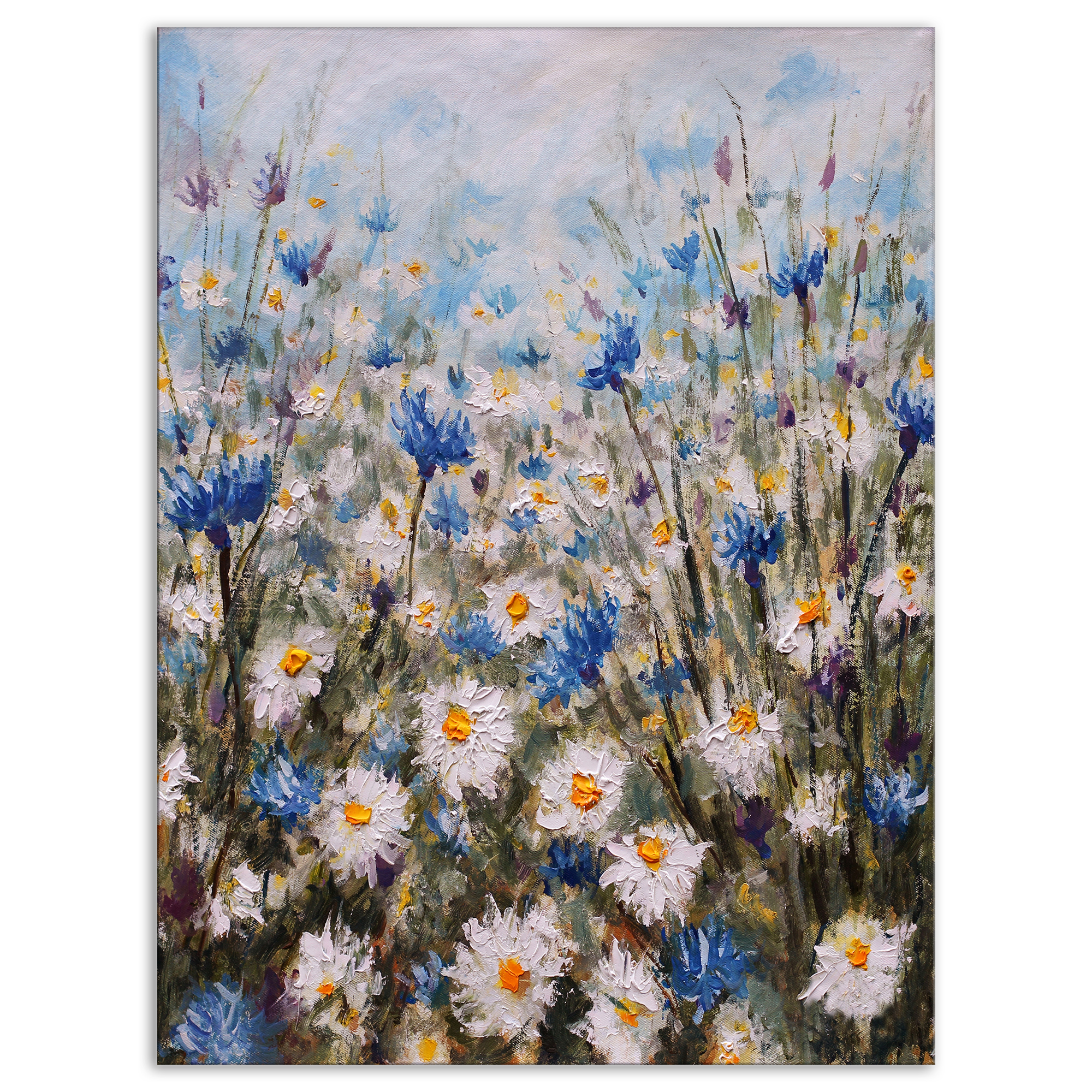 Glade of Cornflowers and Daisies - Floral Art Canvas Print - image 1 of 3