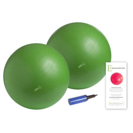 Althea Medical Group Large Exercise Ball Kit