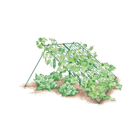 Gardener's Supply Company Cucumber Trellis