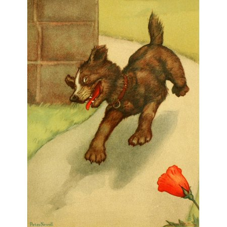 Mother Gooses Menagerie 1901 The little dog that laughed Canvas Art - Peter Newell (18 x