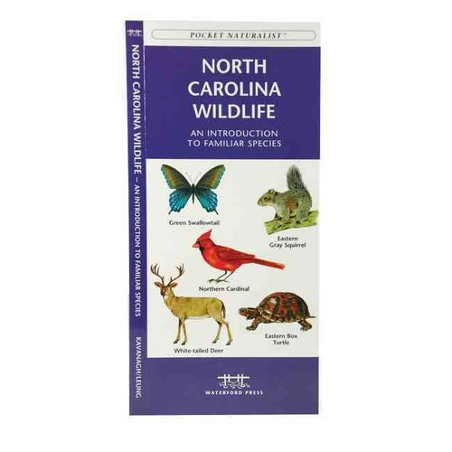 North Carolina Wildlife: An Introduction To Familiar Species