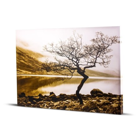 Crystal Art Gallery American Art Decor Standing Tree Shore of Loch Etive Black and White Sepia Tone Photo Print Wall Art on (Best Way To Print Black And White Photos)