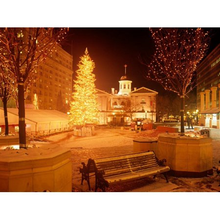 Christmas Tree on Snowy Night in Pioneer Courthouse Square, Portland, Oregon, USA Print Wall Art By Janis Miglavs ()