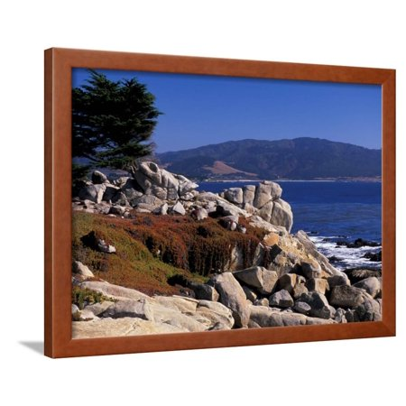 17-Mile Drive, Pescadero Point, Carmel, California, USA Framed Print Wall Art By Nik Wheeler