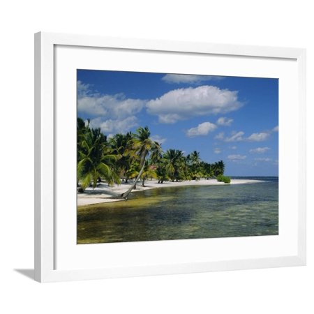 Main Dive Site in Belize, Ambergris Caye, Belize, Central America Framed Print Wall Art By Gavin