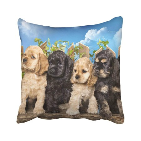 ARTJIA Brown Puppy Family American Cocker Spaniel Dogs White Funny Litter Adorable Animal Basket Pillowcase 18x18 inch ()