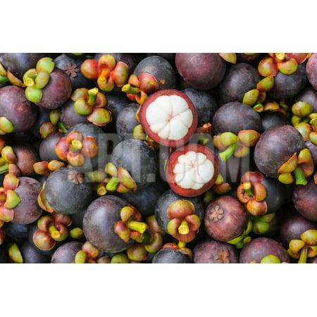 Fresh Organic Mangosteen Thai Fruit in Market Thailand. Print Wall Art By