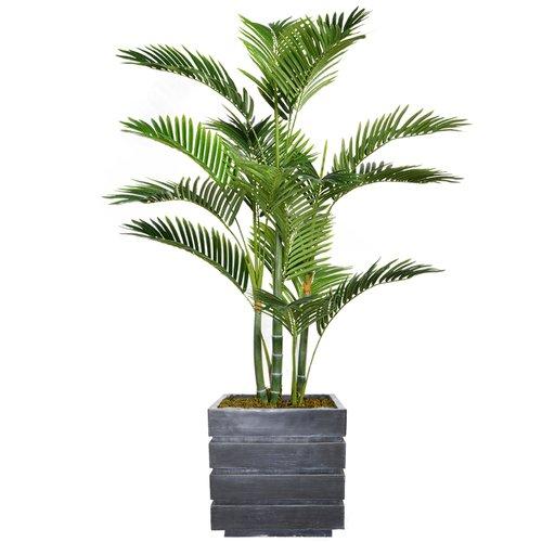 Bloomsbury Market Floor Tall Palm Tree in Planter