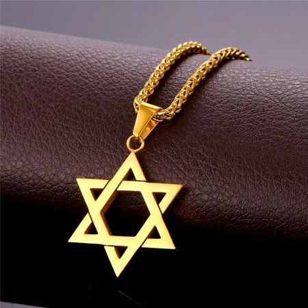 Israel Jewelry (Jewish Jewelry Magen Star of David Pendant Necklace Women Men Chain Rose/Gold Plated Stainless Steel Israel)